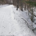 100308-Snow-trail-52.jpg